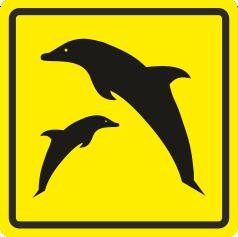 П 09 Дельфинариум