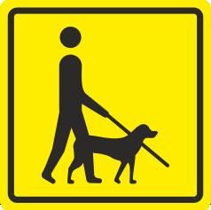 Т 27 Комната собаки-поводыря
